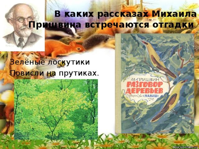 В каких рассказах Михаила Пришвина встречаются отгадки Зелёные лоскутики Повисли на прутиках.
