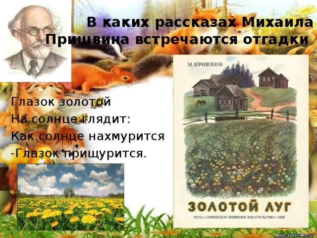 В каких рассказах Михаила Пришвина встречаются отгадки Глазок золотой На солнце глядит: Как солнце нахмурится -Глазок прищурится.