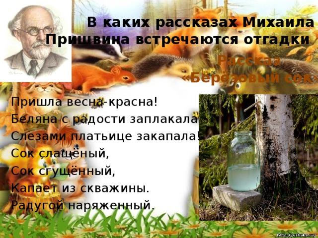 В каких рассказах Михаила Пришвина встречаются отгадки Рассказ «Берёзовый сок» Пришла весна-красна! Беляна с радости заплакала. Слезами платьице закапала! Сок слащёный, Сок сгущённый, Капает из скважины. Радугой наряженный.