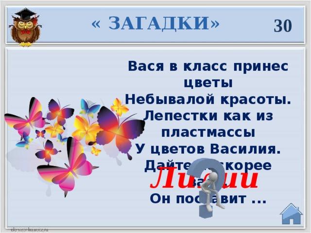 « ЗАГАДКИ» 30 Вася в класс принес цветы  Небывалой красоты.  Лепестки как из пластмассы  У цветов Василия.  Дайте поскорее вазу,  Он поставит ... Лилии