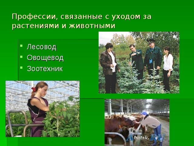 Профессии, связанные с уходом за растениями и животными