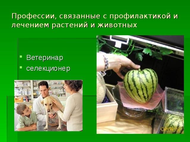 Профессии, связанные с профилактикой и лечением растений и животных