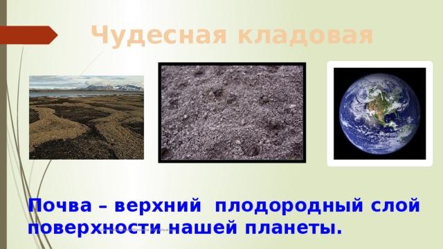 Чудесная кладовая Почва – верхний плодородный слой поверхности нашей планеты. Крестьянинова Марина Витальевна