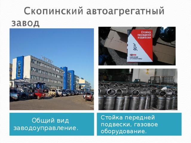 Основан в 1962г. Производит: амортизаторы, упоры, двери задка, стойки к автомобилям ГАЗ, ВАЗ, УАЗ,