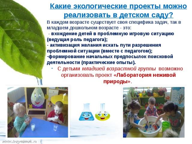 Какие экологические проекты можно реализовать в детском саду? В каждом возрасте существует своя специфика задач, так в младшем дошкольном возрасте - это:  - вхождение детей в проблемную игровую ситуацию (ведущая роль педагога); - активизация желания искать пути разрешения проблемной ситуации (вместе с педагогом);