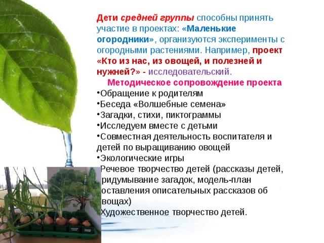 Дети средней группы  способны принять участие в проектах: «Маленькие огородники» , организуются эксперименты с огородными растениями. Например, проект «Кто из нас, из овощей, и полезней и нужней?» - исследовательский. Методическое сопровождение проекта