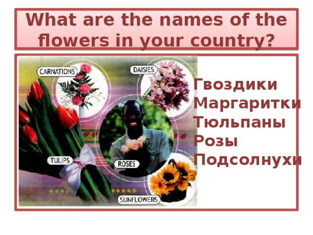What are the names of the flowers in your country? Гвоздики Маргаритки Тюльпаны Розы Подсолнухи