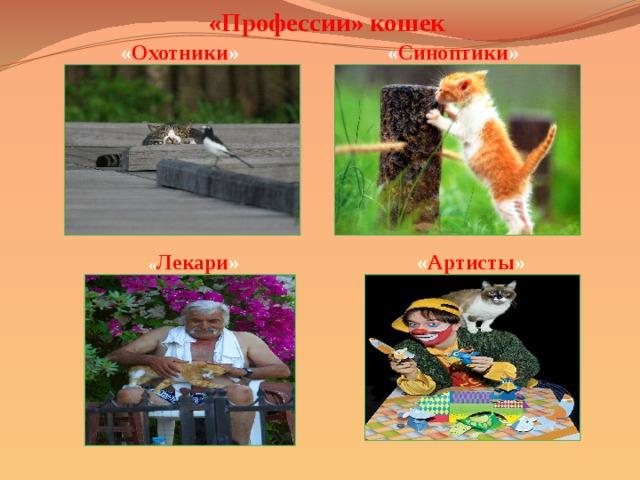 «Профессии» кошек  « Охотники »  « Синоптики »  « Лекари »  « Артисты »