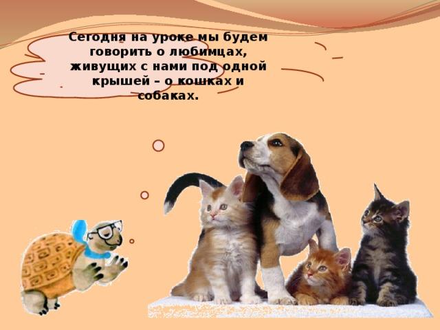 Сегодня на уроке мы будем говорить о любимцах, живущих с нами под одной крышей – о кошках и собаках.
