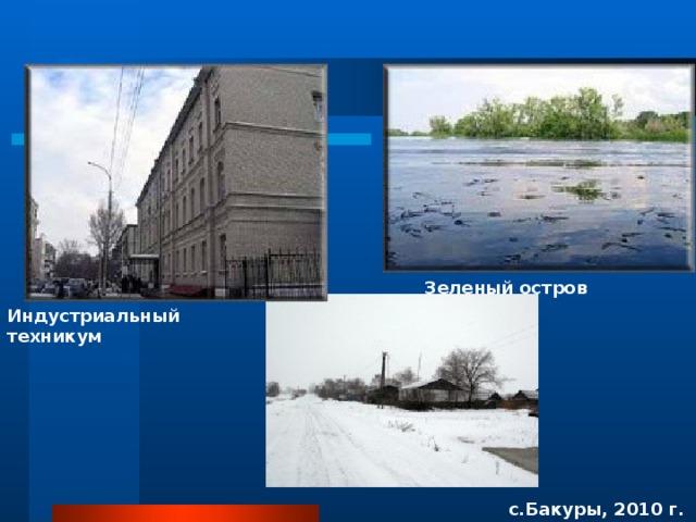 Зеленый остров Индустриальный техникум с.Бакуры, 2010 г.