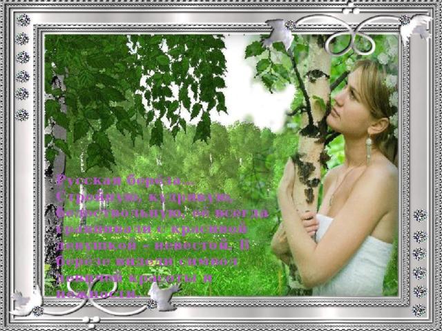Русская берёза… Стройную, кудрявую, белоствольную, её всегда сравнивали с красивой девушкой – невестой. В берёзе видели символ девичей красоты и нежности.
