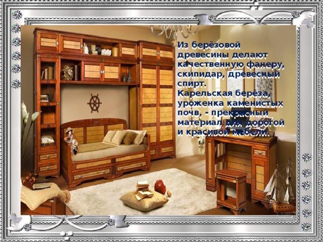 Из берёзовой древесины делают качественную фанеру, скипидар, древесный спирт. Карельская берёза, уроженка каменистых почв, - прекрасный материал для дорогой и красивой мебели.