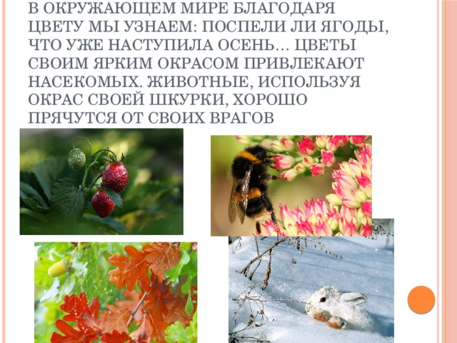 В окружающем мире благодаря цвету мы узнаем: поспели ли ягоды, что уже наступила осень… Цветы своим ярким окрасом привлекают насекомых. Животные, используя окрас своей шкурки, хорошо прячутся от своих врагов