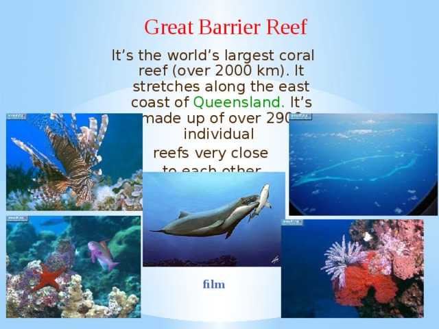 Great Barrier Reef It's the world's largest coral reef (over 2000 km). It stretches along the east coast of Queensland. It's made up of over 2900 individual reefs very close to each other . film