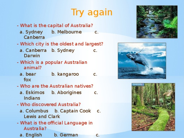 Try again - What is the capital of Australia?  a. Sydney  b. Melbourne c. Canberra - Which city is the oldest and largest?  a. Canberra  b. Sydney c. Darwin - Which is a popular Australian animal?  a. bear  b. kangaroo c. fox - Who are the Australian natives?  a. Eskimos  b. Aborigines  c. Indians - Who discovered Australia?  a. Columbus b. Captain Cook c. Lewis and Clark - What is the official Language in Australia?  a. English b. German c. Spain
