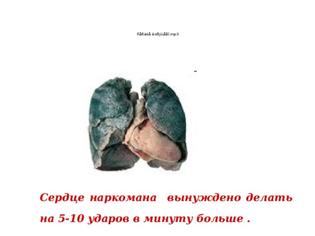 Сердце наркомана вынуждено делать на 5-10 ударов в минуту больше .