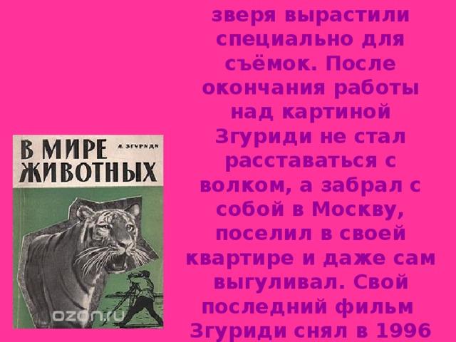 Интересно, что в фильме «Белый клык» снимался настоящий волк - зверя вырастили специально для съёмок. После окончания работы над картиной Згуриди не стал расставаться с волком, а забрал с собой в Москву, поселил в своей квартире и даже сам выгуливал. Свой последний фильм Згуриди снял в 1996 году, когда ему перевалило за 90. Умер режиссер в 1998 году.