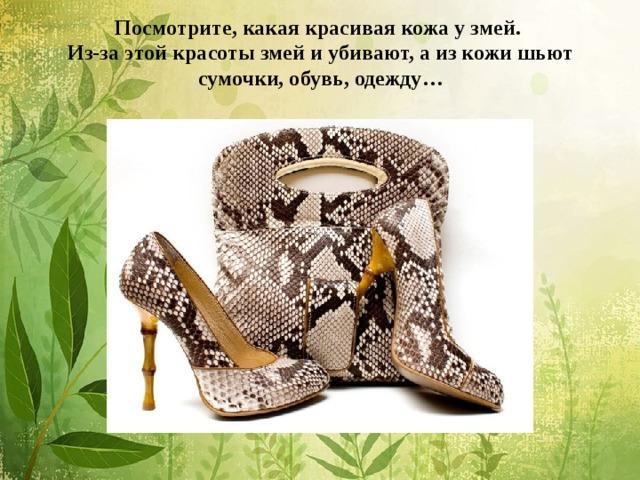 Посмотрите, какая красивая кожа у змей.  Из-за этой красоты змей и убивают, а из кожи шьют сумочки, обувь, одежду…