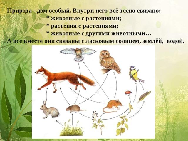 Природа - дом особый. Внутри него всё тесно связано:  * животные с растениями;  * растения с растениями;  * животные с другими животными…  А все вместе они связаны с ласковым солнцем, землёй, водой.