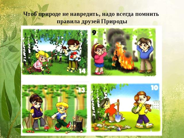 Чтоб природе не навредить, надо всегда помнить  правила друзей Природы