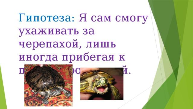 Гипотеза: Я сам смогу ухаживать за черепахой, лишь иногда прибегая к помощи родителей.