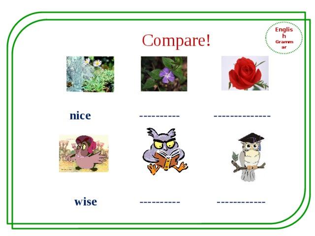 English Grammar Compare! nice ---------- --------------  wise ---------- ------------