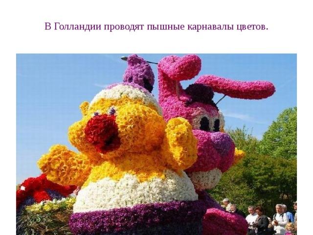 В Голландии проводят пышные карнавалы цветов.