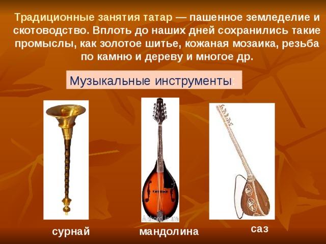 Традиционные занятия татар — пашенное земледелие и скотоводство. Вплоть до наших дней сохранились такие промыслы, как золотое шитье, кожаная мозаика, резьба по камню и дереву и многое др. Музыкальные инструменты :  саз сурнай мандолина