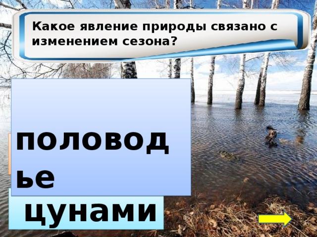 Какое явление природы связано с изменением сезона?  половодье  прилив  цунами