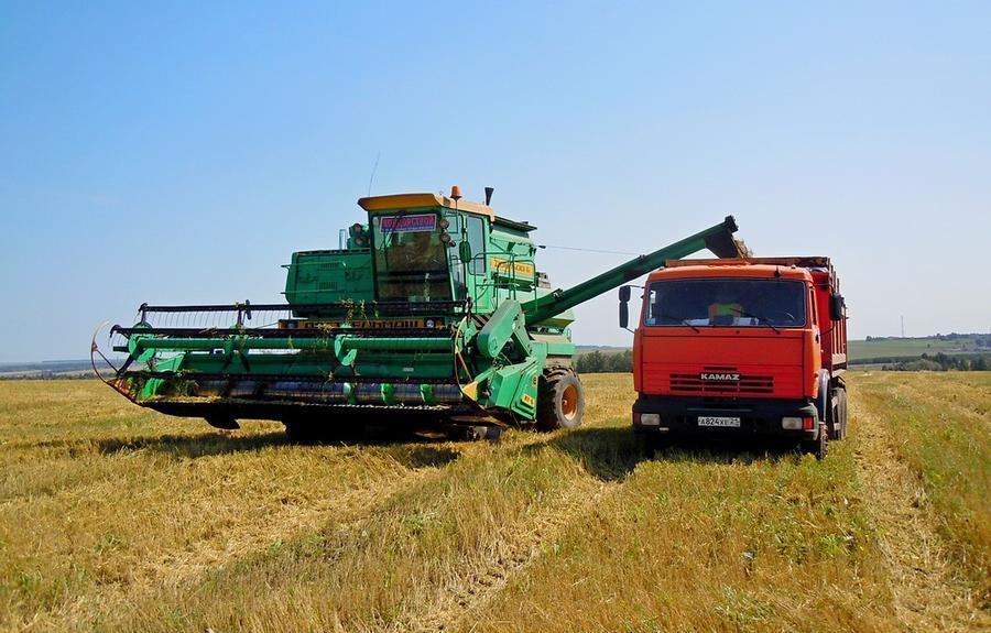 машины везут зерно на элеватор картинки для детей