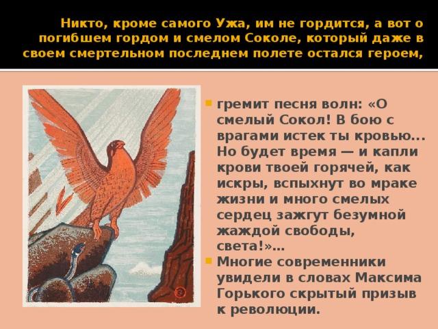 Никто, кроме самого Ужа, им не гордится, а вот о погибшем гордом и смелом Соколе, который даже в своем смертельном последнем полете остался героем,