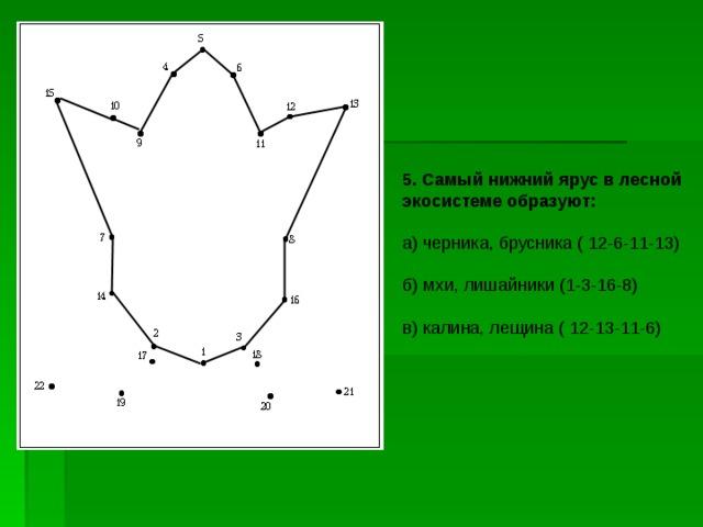 5. Самый нижний ярус в лесной экосистеме образуют: а) черника, брусника ( 12-6-11-13) б) мхи, лишайники ( 1 - 3 - 16 - 8 ) в) калина, лещина ( 12-13-11-6)