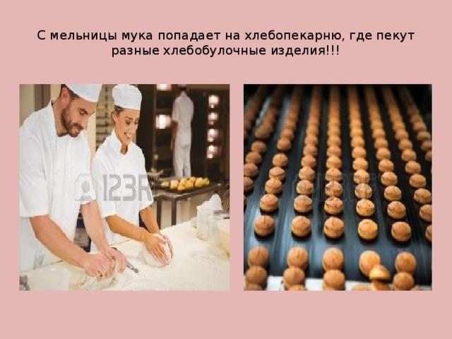 С мельницы мука попадает на хлебопекарню, где пекут разные хлебобулочные изделия!!!
