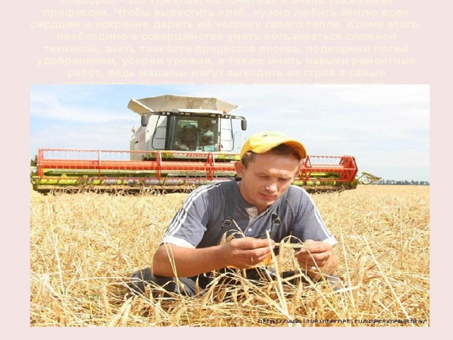 Хлебороб - это тяжелая, но почетная и очень уважаемая профессия. Чтобы вырастить хлеб, нужно любить землю всем сердцем и искренне дарить ей частицу своего тепла. Кроме этого, необходимо в совершенстве уметь пользоваться сложной техникой, знать тонкости процессов посева, подкормки полей удобрениями, уборки урожая, а также иметь навыки ремонтных работ, ведь машины могут выходить из строя в самый неподходящий момент, а ждать механика времени нет.