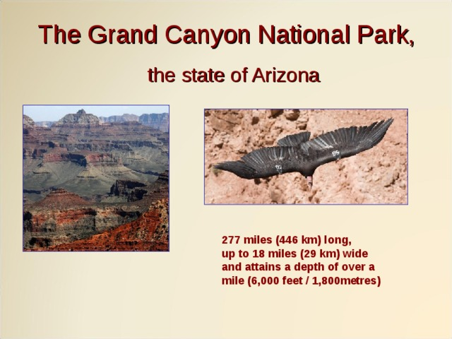 The Grand Canyon National Park, the state of Arizona 277 miles (446 km) long, up to 18 miles (29 km) wide and attains a depth of over a mile (6,000 feet / 1,800metres)
