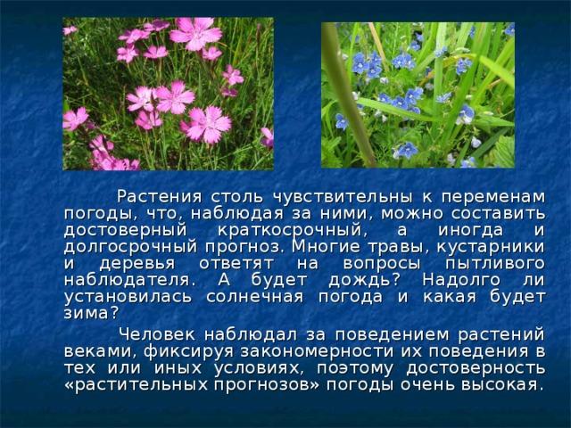 Растения столь чувствительны к переменам погоды, что, наблюдая за ними, можно составить достоверный краткосрочный, а иногда и долгосрочный прогноз. Многие травы, кустарники и деревья ответят на вопросы пытливого наблюдателя. А будет дождь? Надолго ли установилась солнечная погода и какая будет зима?  Человек наблюдал за поведением растений веками, фиксируя закономерности их поведения в тех или иных условиях, поэтому достоверность «растительных прогнозов» погоды очень высокая.