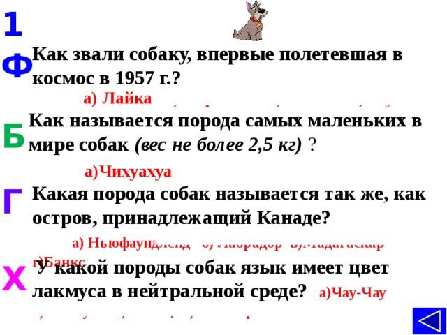 1 Как звали собаку, впервые полетевшая в космос в 1957 г.? Ф а) Лайка б) Стрелка в) Белка г) Жучка  Как называется порода самых маленьких в мире собак  (вес не более 2,5 кг)  ?  а)Чихуахуа б) Бульдог в)Пудель г)Такса Б Г Какая порода собак называется так же, как остров, принадлежащий Канаде? а) Ньюфаундленд б) Лабрадор в)Мадагаскар г)Банкс  У какой породы собак язык имеет цвет лакмуса в нейтральной среде? а)Чау-Чау б) Питбуль в) Шпиц г) Мастиф Х