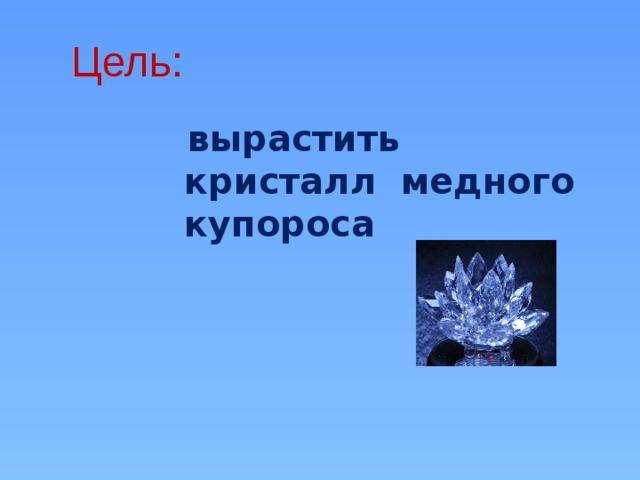 Цель:   вырастить кристалл медного купороса