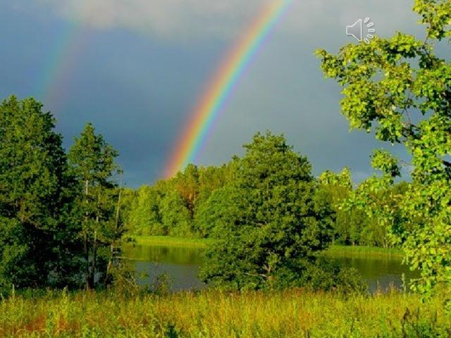 Эти семь цветов — основные названия цветов, кото-рые принято выделять в радуге. Цвета эти в радуге переходят друг в друга с плавным изменением через множество промежуточных оттенков.