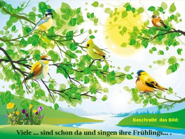 Beschreibt das Bild: Viele ... sind schon da und singen ihre Frühlings... .