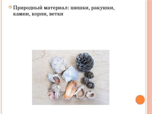 Природный материал: шишки, ракушки, камни, корни, ветки