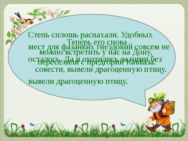Степь сплошь распахали. Удобных мест для фазаньих гнездовий совсем не осталось. Да и охотились за ними без совести, вывели драгоценную птицу. вывели драгоценную птицу. Теперь его снова можно встретить у нас на Дону, переселили с предгорий Кавказа.