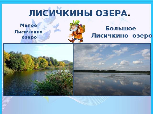 ЛИСИЧКИНЫ ОЗЕРА .   Малое Лисичкино озеро Большое Лисичкино озеро