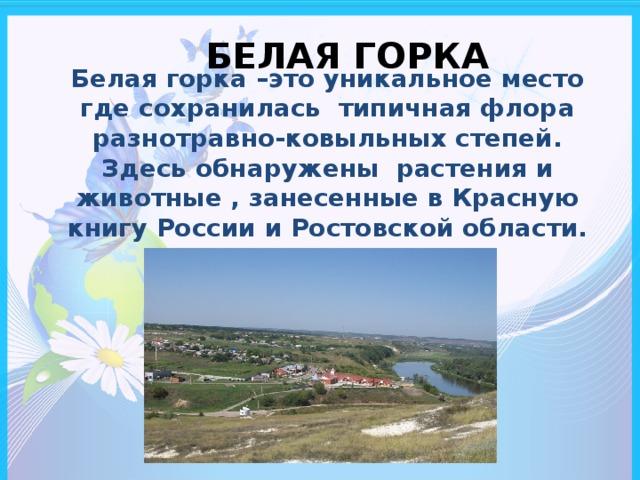 БЕЛАЯ ГОРКА Белая горка –это уникальное место где сохранилась типичная флора разнотравно-ковыльных степей. Здесь обнаружены растения и животные , занесенные в Красную книгу России и Ростовской области.