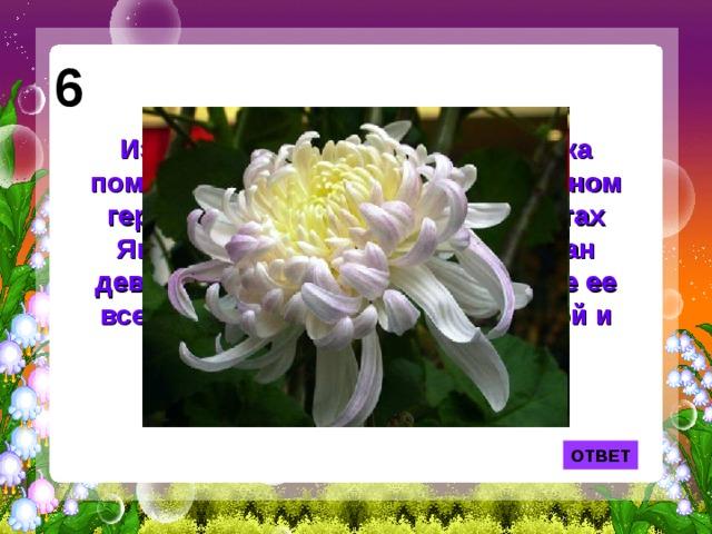 6 Изображение именно этого цветка помещено на японском национальном гербе, а также на орденах и монетах Японии. В Китае ее именем назван девятый месяц года, ну а в Европе ее всегда считали символом глубокой и безмолвной печали.  ОТВЕТ