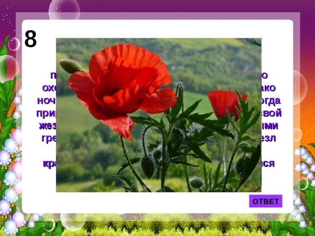 8 Предание говорит, что когда на Земле появились первые люди, природа позаботилась о том, чтобы они не только охотились, но и спокойно отдыхали. Однако ночью люди продолжали бодрствовать. Тогда природа послала сон и воткнула в землю свой жезл. Сновидения окутали жезл воздушными грезами, ночь вдохнула в него жизнь, и жезл пустил корни, зазеленел и раскрылся красивыми цветами. Так на Земле появился цветок грез. ОТВЕТ