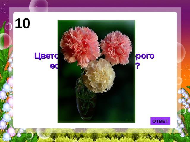 10 Цветок, в названии которого есть кусочек железа?  ОТВЕТ