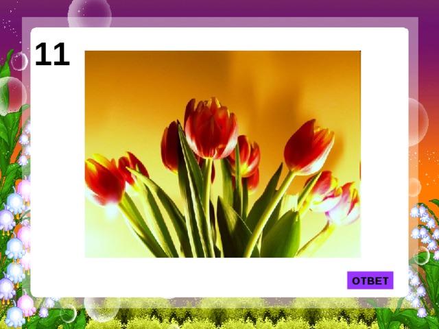 11 Из этого цветка появилась на свет Дюймовочка. ОТВЕТ