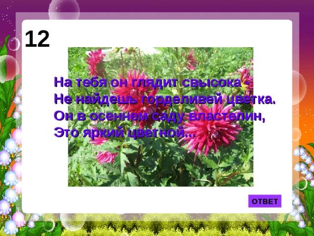 12 На тебя он глядит свысока -  Не найдешь горделивей цветка.  Он в осеннем саду властелин,  Это яркий цветной... ОТВЕТ