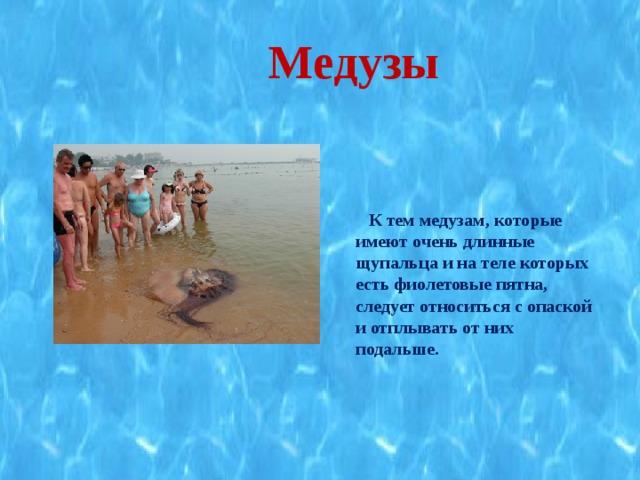 Медузы    К тем медузам, которые имеют очень длинные щупальца и на теле которых есть фиолетовые пятна, следует относиться с опаской и отплывать от них подальше.